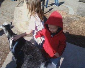 rsz_abbie_&_micah_petting_goats
